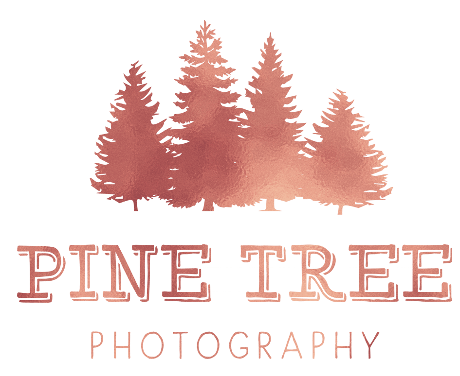 Logo-Pinetree-Photography