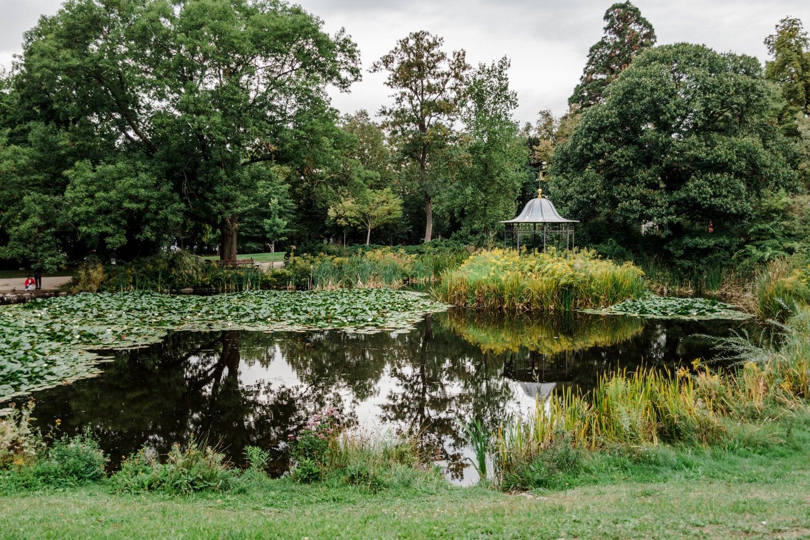 Teich im Park des Prinz-Emil-Schlösschen in Darmstadt