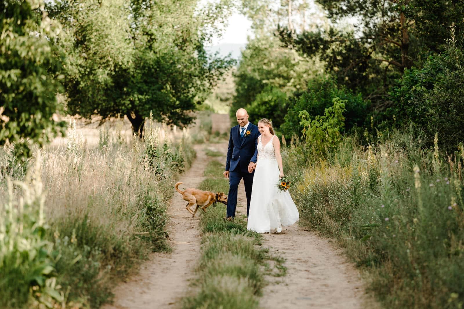 Brautpaar beim Fotoshooting mit rennendem Hund im Grünen.