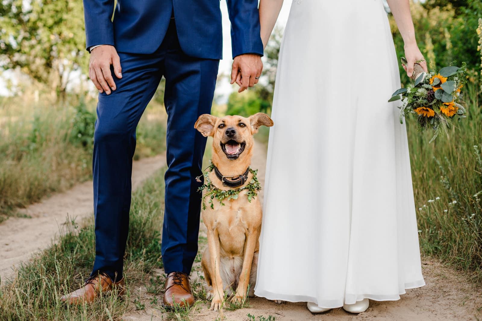 Ein Hund sitzt zwischen seinem Brautpaar im Sand auf einem Weg und schaut in die Kamera.